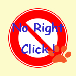 no-right-click-0